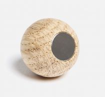Ladybird magnets
